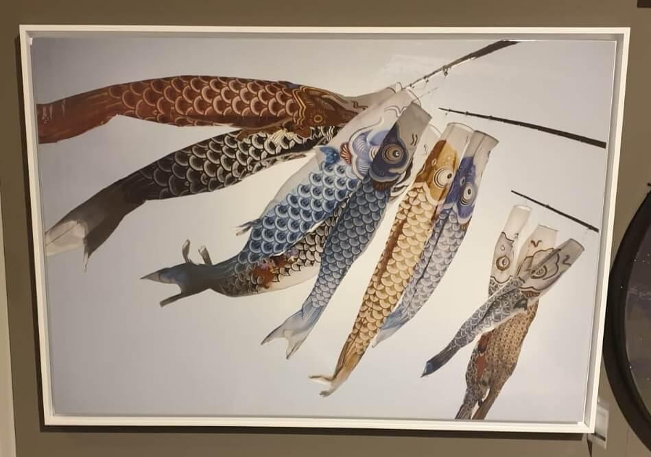 Fish Kyte